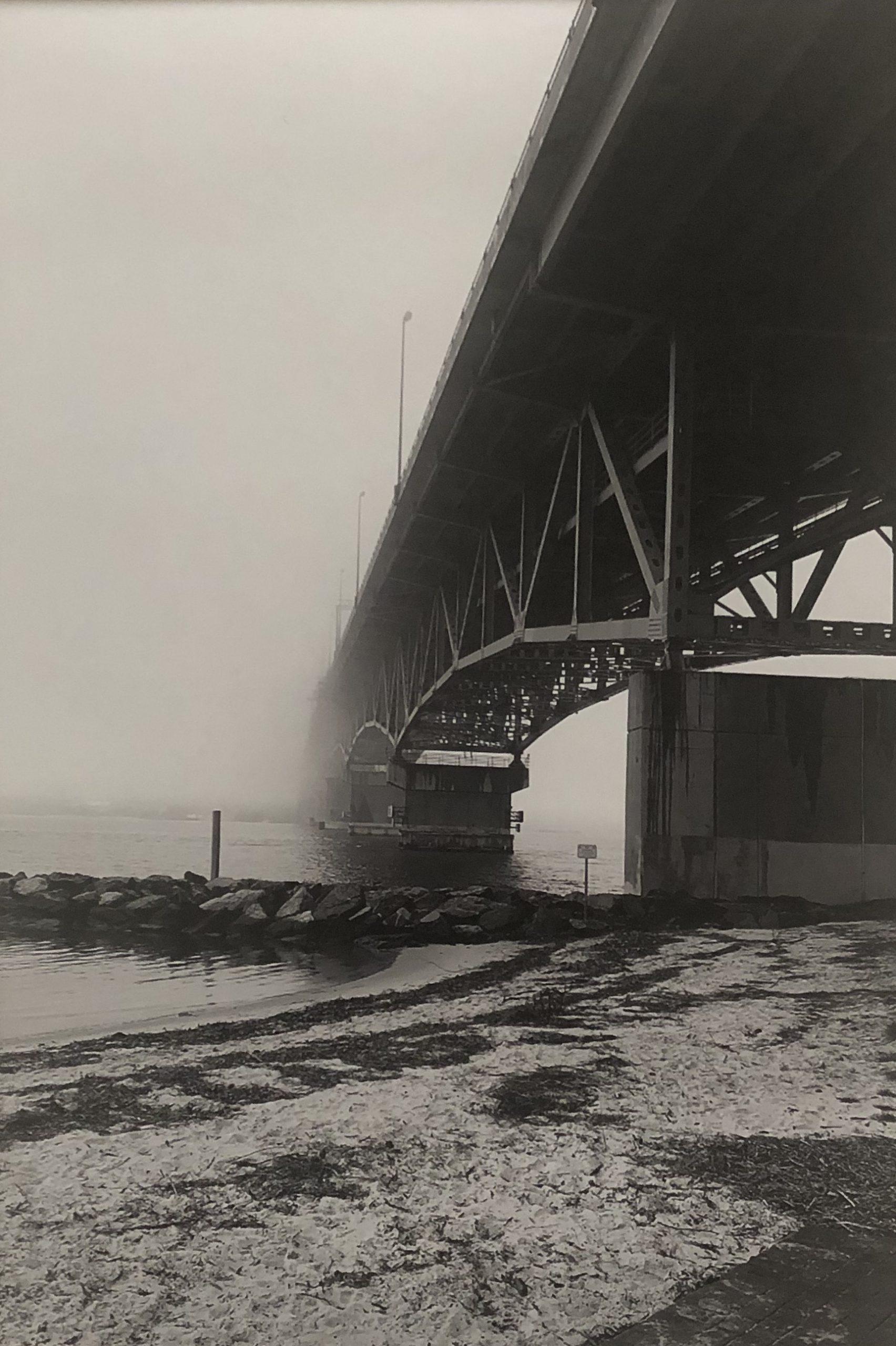Caroline Ervin - Bridge to the Future